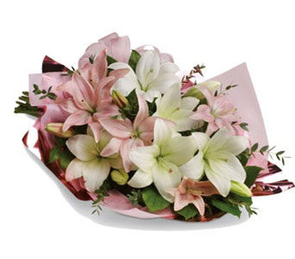 Picture of Lovely Lilies